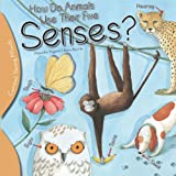How Do Animals Use their Five Senses? (Curious Young Minds)