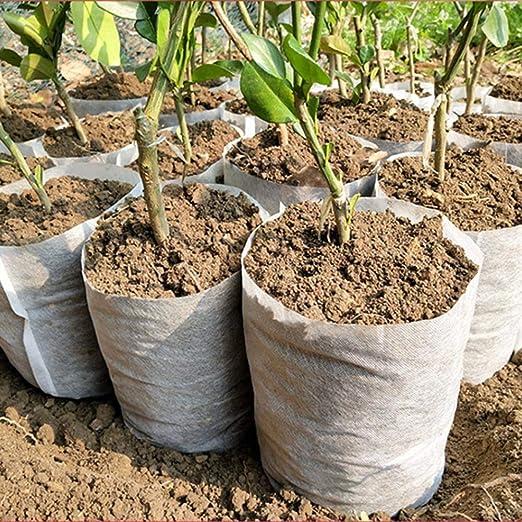 cuckoo-X 100 Bolsas de Cultivo para Plantas no Tejidas degradables ...