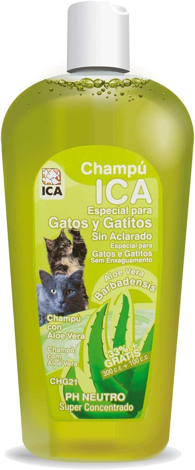 ICA CHG21 Champú Antiparasitario con Aloe Vera para Gatos y ...