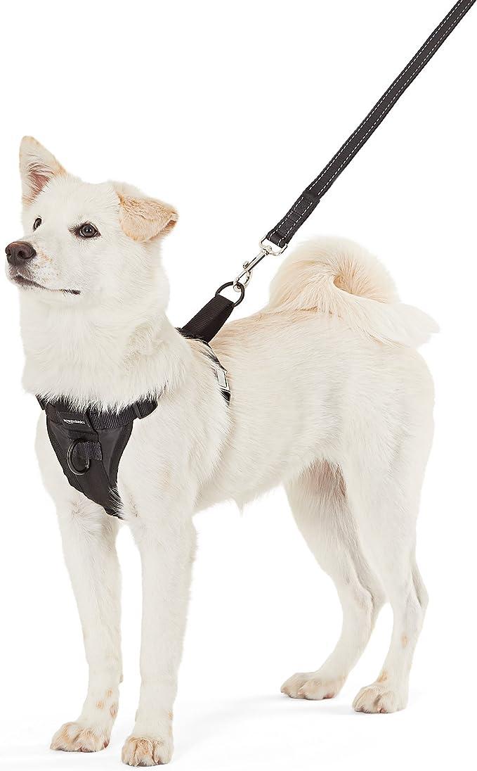 AmazonBasics - Arnés para perro, pequeño: Amazon.es: Productos ...