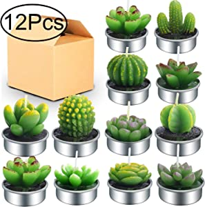 Outee 12 Pcs Cactus Tealight Candles Handmade Delicate Succulent Cactus Candles Flameless Aromatherapy 12 Designs for Birthday Party Wedding Spa
