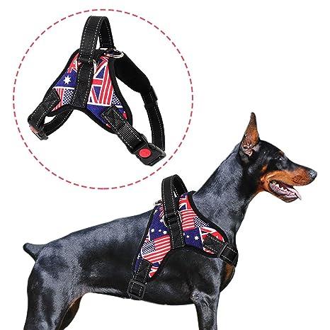 Chaleco Arnés del perro al aire libre, ajustable para perros, no ...