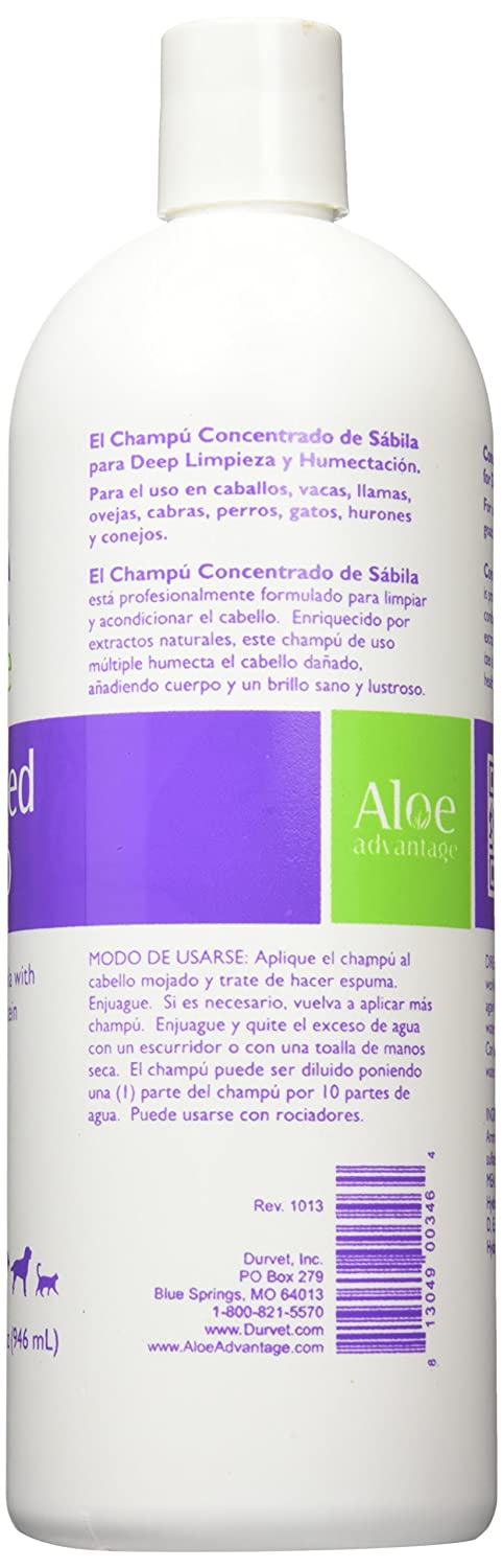 : Amazon.com: Aloe Advantage Aloe Concentrated Shampoo, 32-Ounce