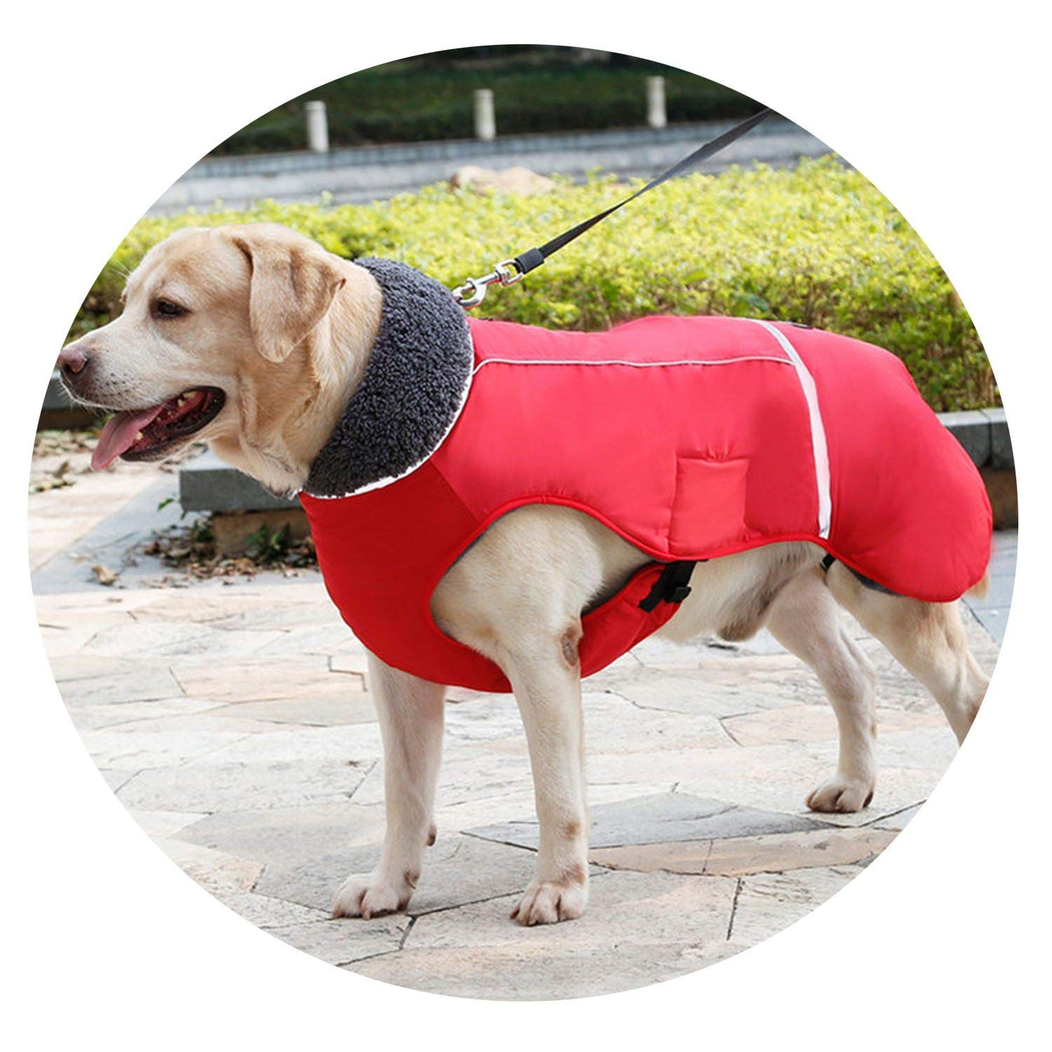 Red S red S Dog Clothes Winter Waterproof Outdoor Pet Dog Jacket Thicken Warm Dog Coat for Small Medium Large Dog Adjustable Pet Clothes 3XL,red,S