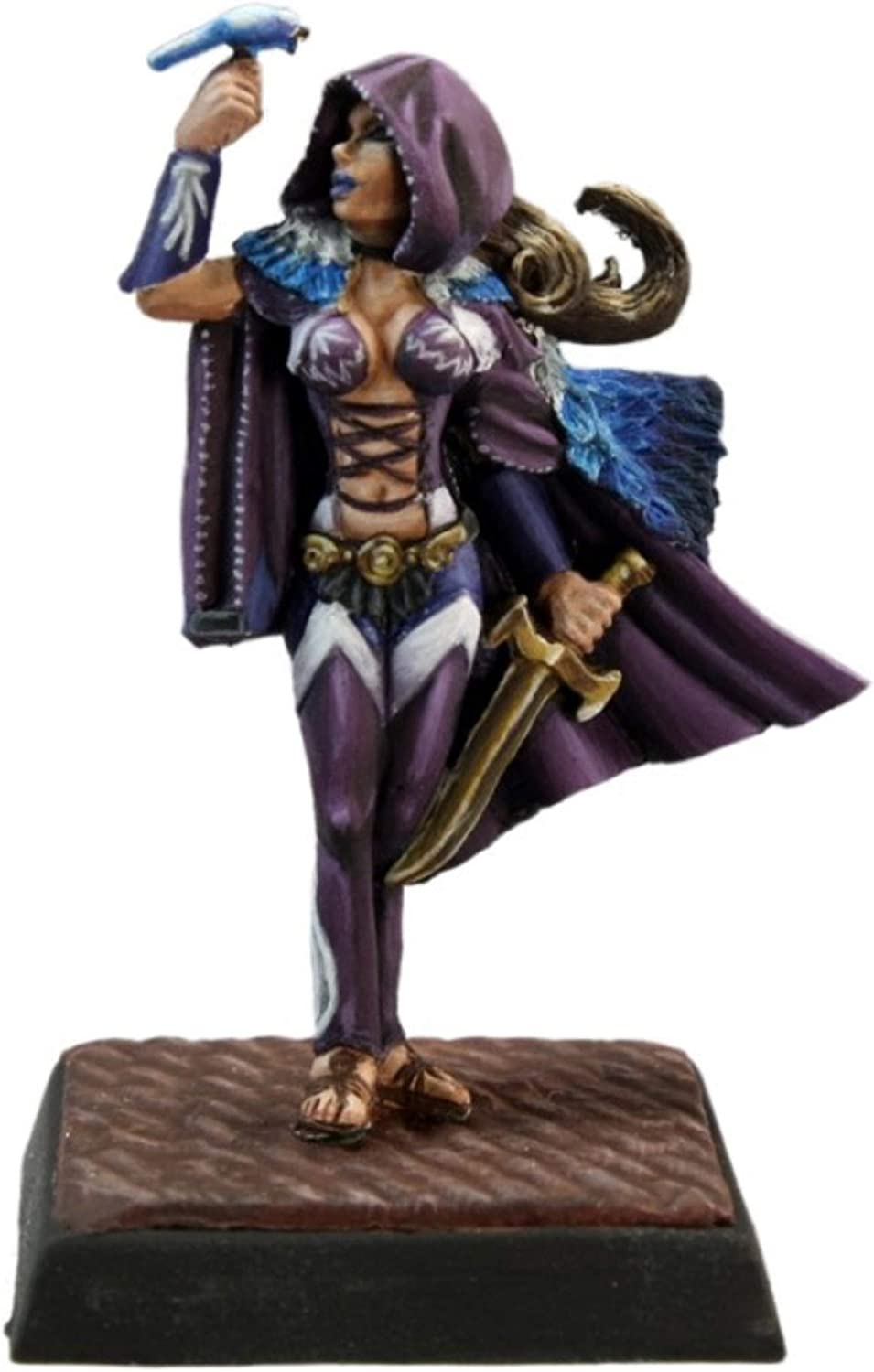 Amazon.com: Reaper Miniatures 60141 Pathfinder Series Lady ...