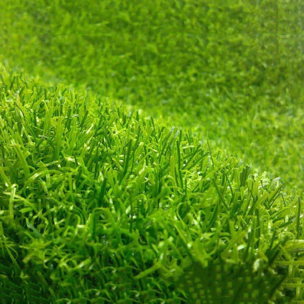 WENZHE 人工芝芝生 ガーデンターフ 人工芝高密度低価格、厚手10 / 20mm、ワイド2メーター、5サイズ ( 色 : B-20mm , サイズ さいず : 2*0.5m ) B07917DCZ6 22815 2*0.5m|B-20mm B20mm 2*0.5m