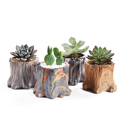 Succulent Planter Pots Small Ceramic Flower Cactus Pots Set 4 Pack Tree Stump Succulent Pots with Drainage Bonsai Pots 4.33 Inch Gift for Home Decor Indoor Outdoor: Garden & Outdoor