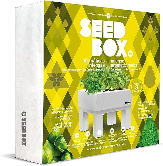 SeedBox SBCOAI - Huerto Urbano de albahaca y Menta (Colección ...