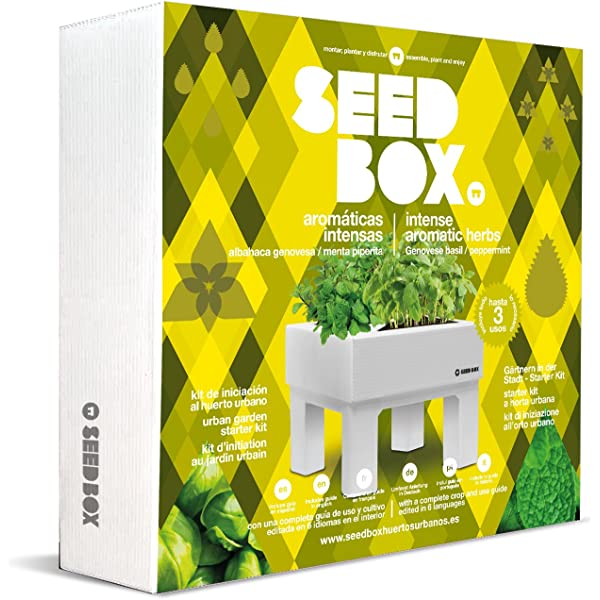 SeedBox SBCUHB-Hierba Buena: Amazon.es: Jardín