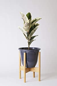 Home Euphoria Natural Bamboo Plant Stand. Mid Century Flower Pot Holder and Display. Fits Planters and pots up to 10 Inches (Plant and Pots NOT Included) (Natural Bamboo)