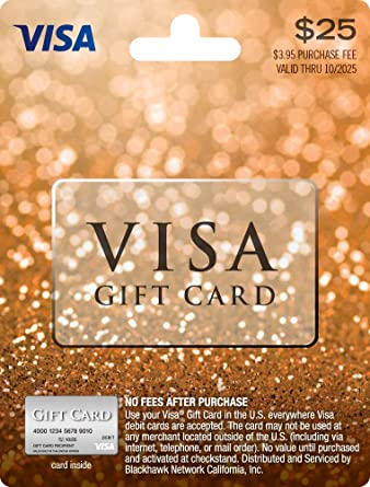 25 visa gift card plus 395 purchase fee - Visa Gift Card Online Purchase