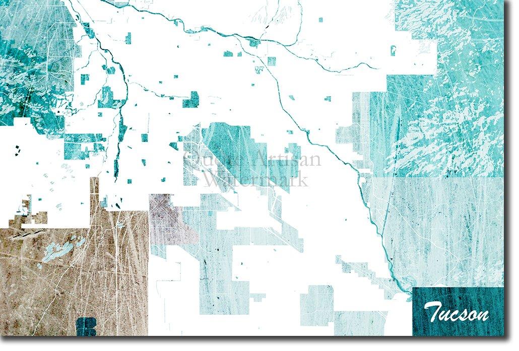 Amazon.com: Introspective Chameleon Tucson, Arizona, USA ... on arizona tucson, zip code map tucson, weather tucson, street map tucson,