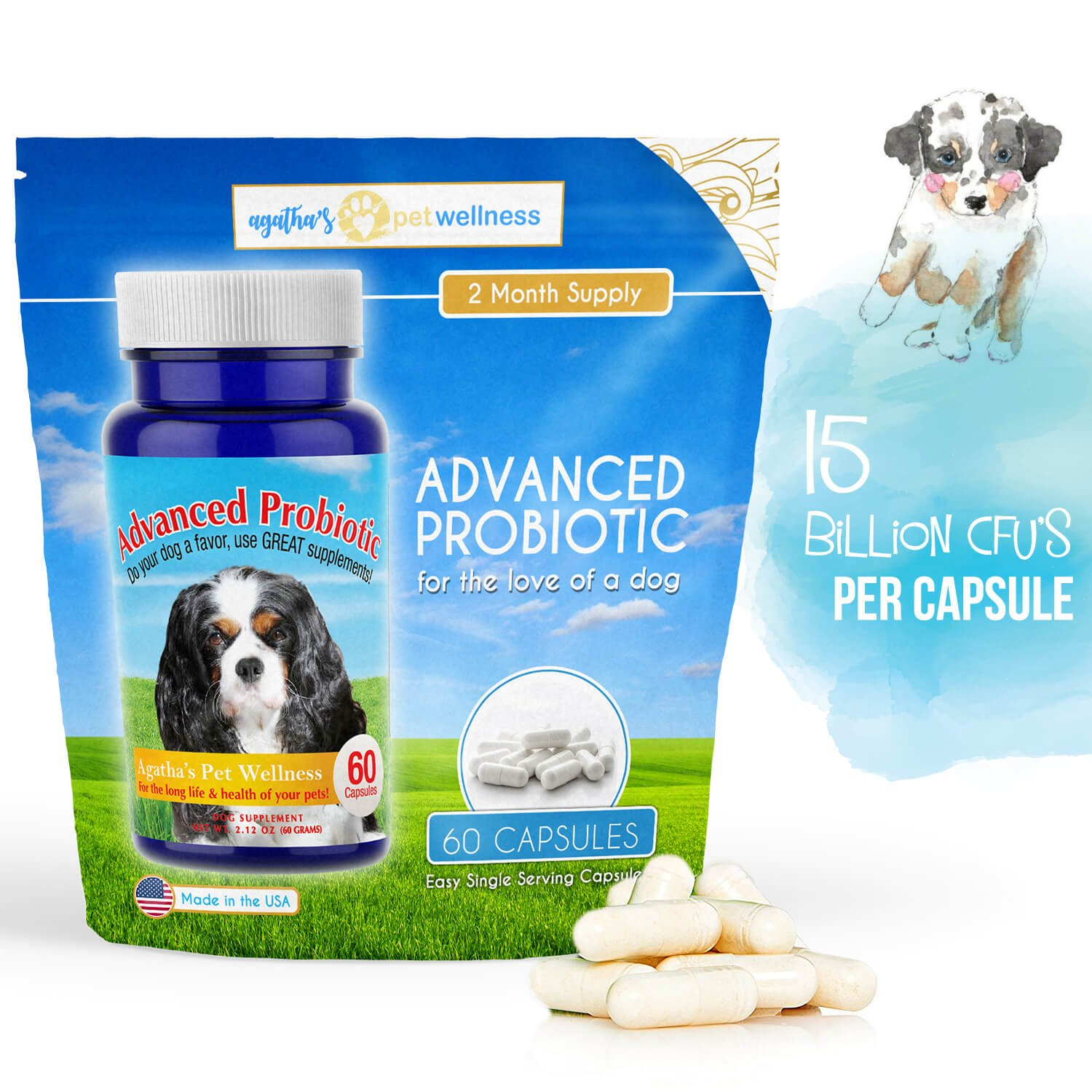 instecho Advanced Probiotic 2 Month Supply - 15 billion/CFU 10 Strains for Dog Health-Voted Best Dog Probiotic 2017 & 2018! Helps Digestion, IBS, Allergies, Dental Issues, Yeast, Diarrhea