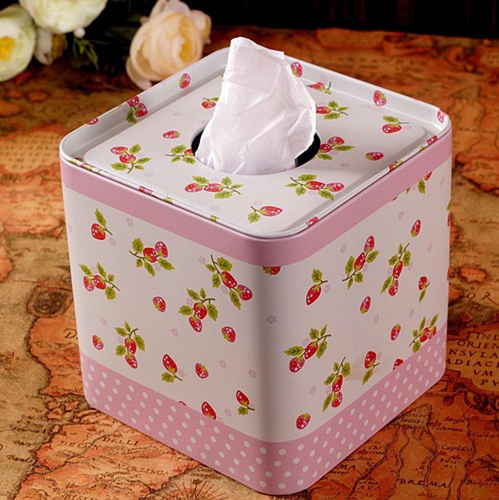 [fresa] hierro caja de papel en rollo caja de lata para inodoro y soporte para pañuelos de papel (32): Amazon.es: Hogar