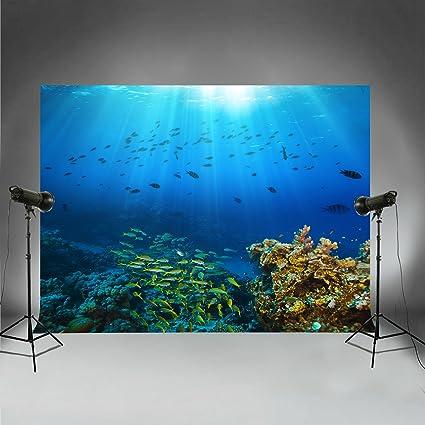 Hintergründe Für Tauch Thema Unterwasserwelt Urlaub Kamera