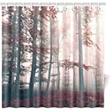 InterestPrint Red Mystic Forest Mystical Charcoal Foggy Country Decor, Mystic Forest Trees and Leaves Red Grass Modern Art Flower Rainy Foggy Gray Scene Fabric Shower Curtain 72 X 72 Inches