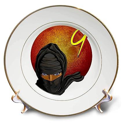 Amazon.com: 3dRose Macdonald Creative Studios – Ninja ...
