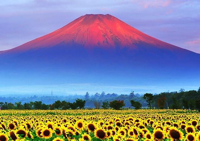 Amazon Co Jp 絵画風 壁紙ポスター はがせるシール式 赤富士 朝焼けの富士山と向日葵畑 ひまわり 幸運 開運 縁起物 風水 パワースポット キャラクロ Fjs 033a2 版 594mm 4mm 建築用壁紙 耐候性塗料 ホビー