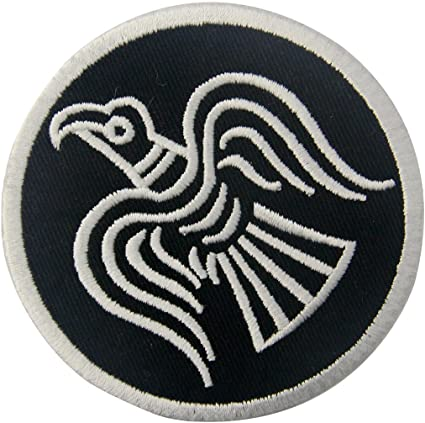 Amazon Com Rare Norse Viking Raven Runes Odin God Of War Patch Embroidered Morale Applique Iron On Sew On Emblem Arts Crafts Sewing