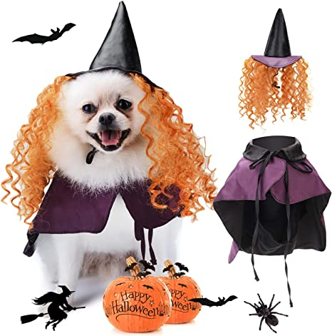 Legendog disfraz de Halloween para perro, disfraz de Halloween ...
