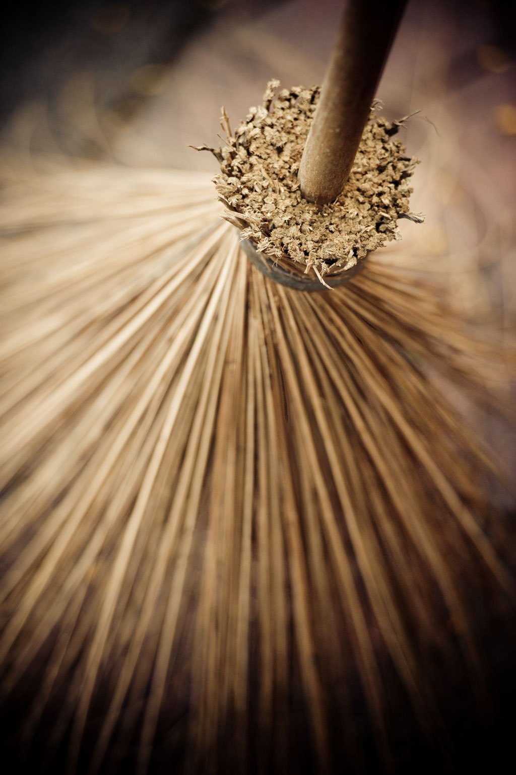 Thai Broom III, Fine Art Photograph By: Erin Berzel; One 24x36in Fine Art Paper Giclee Print by Gango Home Décor