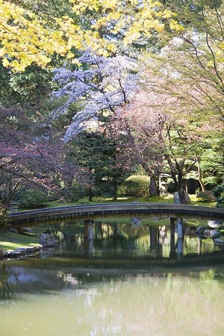 Amazon.com: Posterazzi Bridge in Nitobe Memorial Traditional Japanese Garden Located at The University Vancouver British Columbia Canada Poster Print (24 x ...