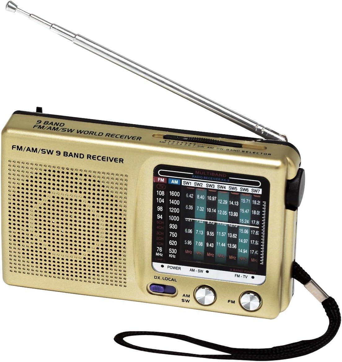 Carol Wright Gifts Portable 9-Band Radio