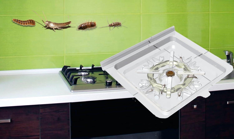 Insecte Salle De Bain Poisson D'Argent ~ insec tive s trap pi ge poisson argent avec app ts et colle