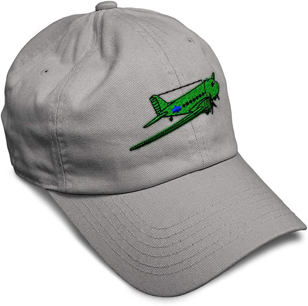 Custom Soft Baseball Cap Plane Dc-3 Gooney Bird Embroidery Twill Cotton