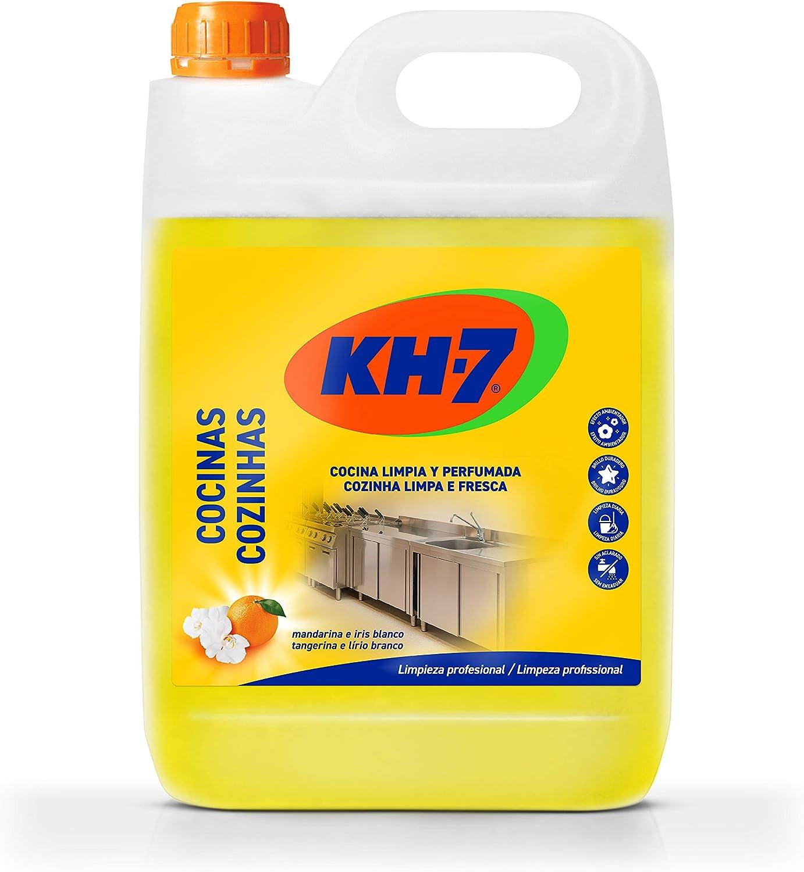 KH Profesional - Limpiador para cocina - 5 l: Amazon.es: Alimentación y bebidas