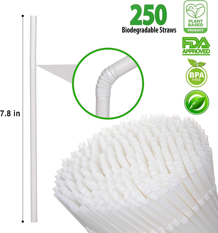 250 St/ück 100 /% kompostierbar BPA-frei eine umweltfreundliche Alternative zu Kunststoff-Strohhalmen biologisch abbaubar StrawPanda Trinkhalme auf Pflanzenbasis