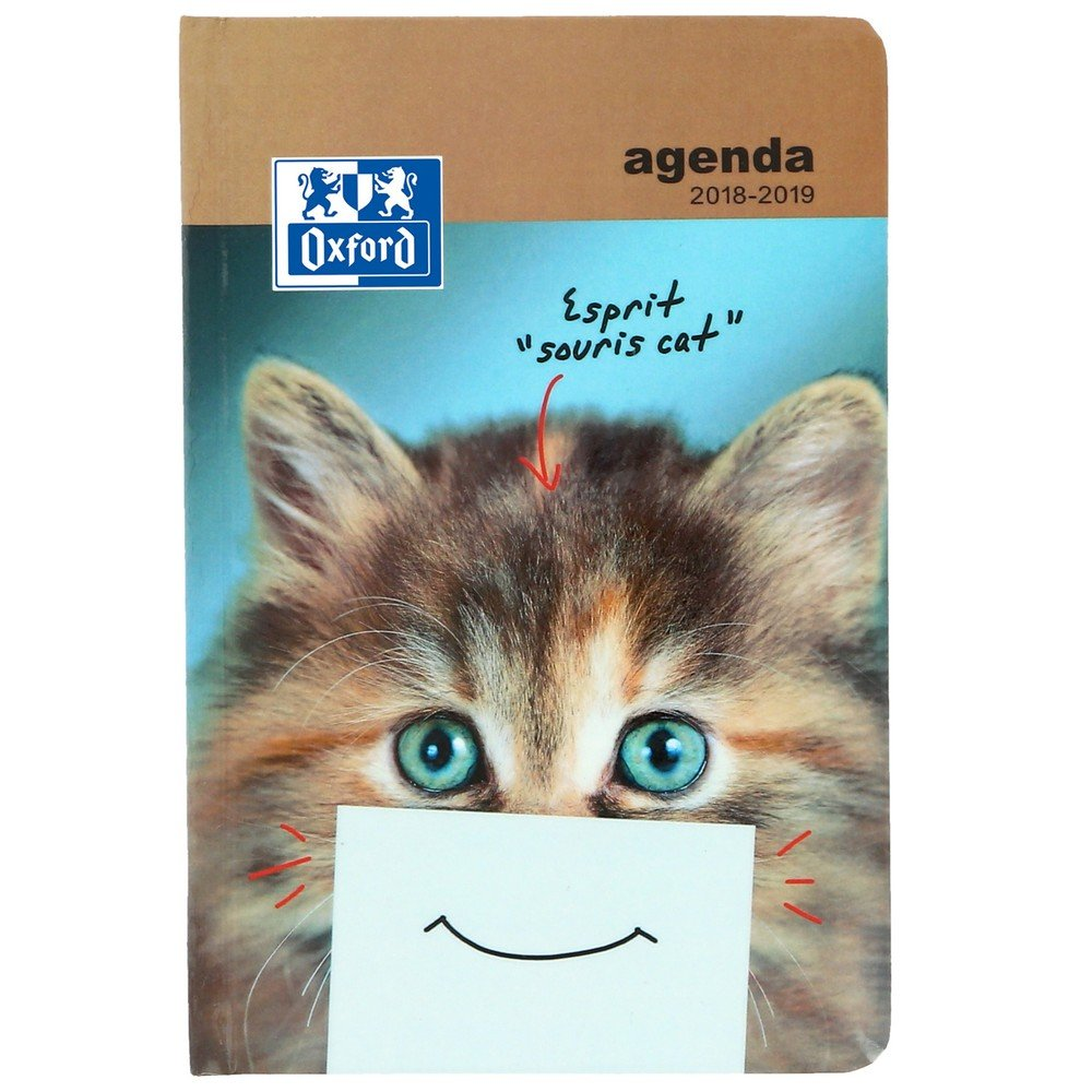 Oxford Funny Pets Daily School Diary 2017-2018 1 Day per Page 352 Pages 12 x 18 cm Kitten (English Not Guaranteed)