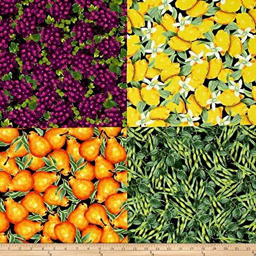 Cheater Panel (Locally Grown Grapes Plus Fat Quarter Cheater Panel Multi Fabric)