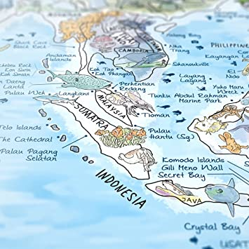 DIVE MAP - Taucher-Weltkarte von Awesome Maps / Ausführung: Englisch ...