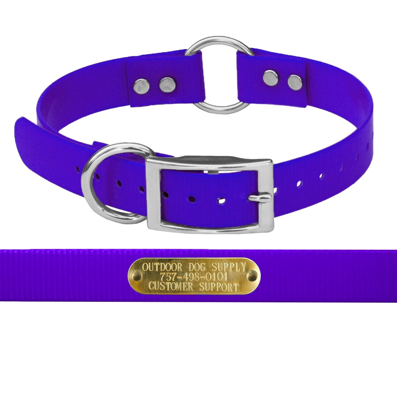 """1"""" Wide Solid Ring in Center Dog Collar Strap with Custom Brass Name Plate"""