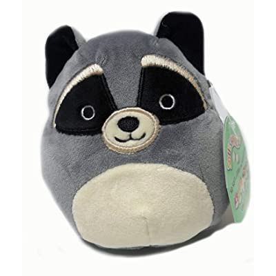 Squishmallow 5 Inch Raccoon Plush Super Soft Squishy Stuffed Animals Age 0+ (Randy The Raccoon): Toys & Games