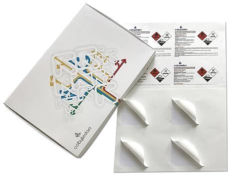Amazon.com: calcomanía de papel para Cotyledon químicos ...