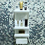 Logger Acrylic Open Wall Shelf Cabinet Ivory for Bathroom Accessories, 18x19x4 cm