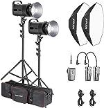 Neewer 600W Photo Studio Strobe Flash Lighting Kit: (2)S101 300W Monolight