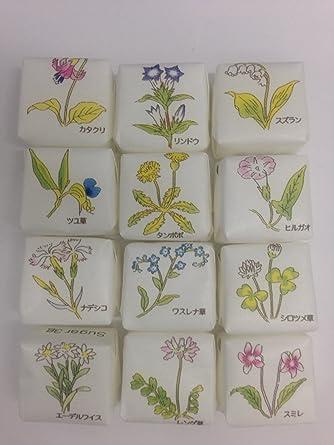 Amazon | 大日本明治製糖 角砂糖...