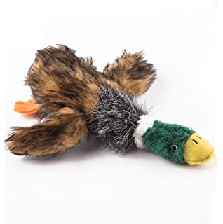 Duckworth DuckALISIAM 9 Inch Wild Duck Squeaky Dog ToyPlush Puppy Chew