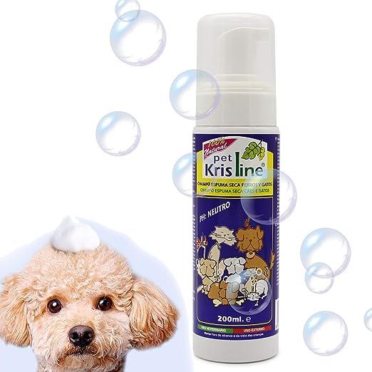 BPS (R Champú de Espuma Seca, Shampoo para Perro, Gato, Animales ...