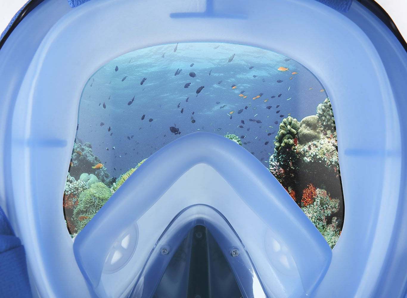 Vaincre 180° Full Face Snorkel Mask Panoramic View Anti-Fog,Anti-Leak Snorkeling Design with Adjustable Head Straps-See Larger Viewing Area Than Traditional Masks for Adults Youth (Black/Blue S/M)