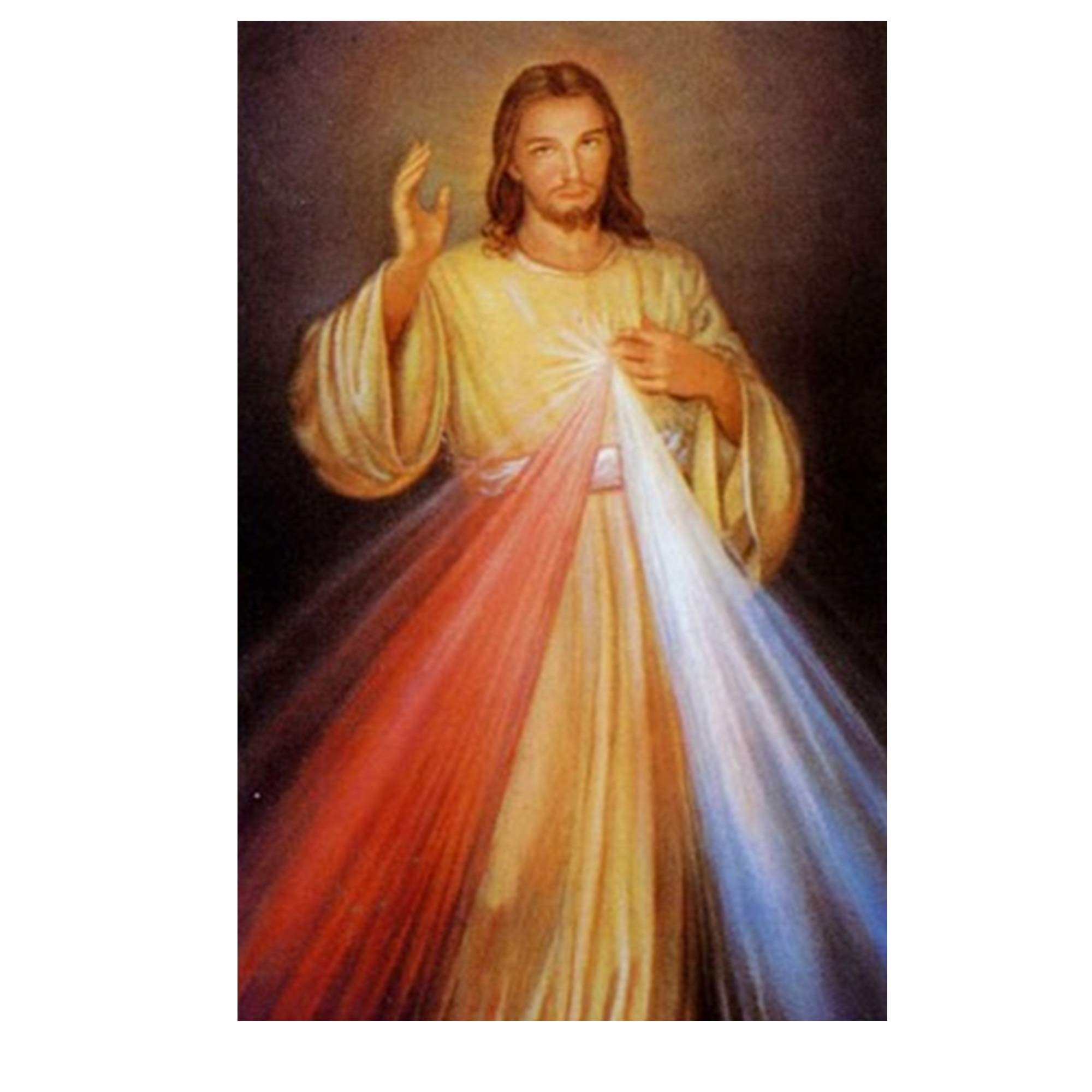 Divine Mercy Jesus I Trust in You Laminated Holy Card Blessed by His Holiness Pope Francis