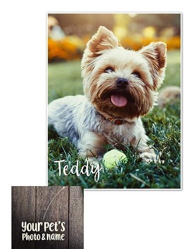 17f1c988cb Amazon.com  Pet Photo Blanket- Dog Photo Blanket- Personalized ...