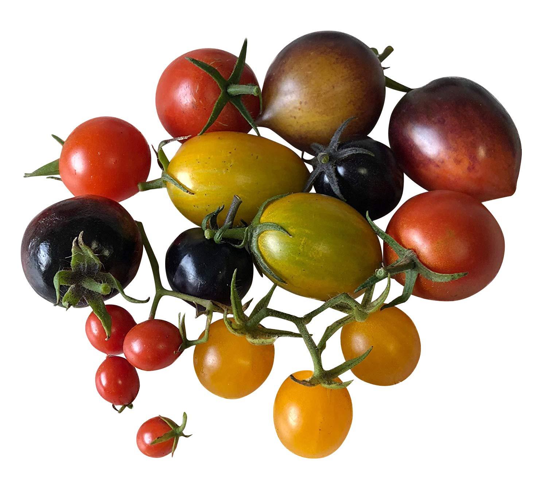 """TOMATE /""""red Million/""""  Cherry süß Massenträger über 500 Tomaten an der Pflanze"""