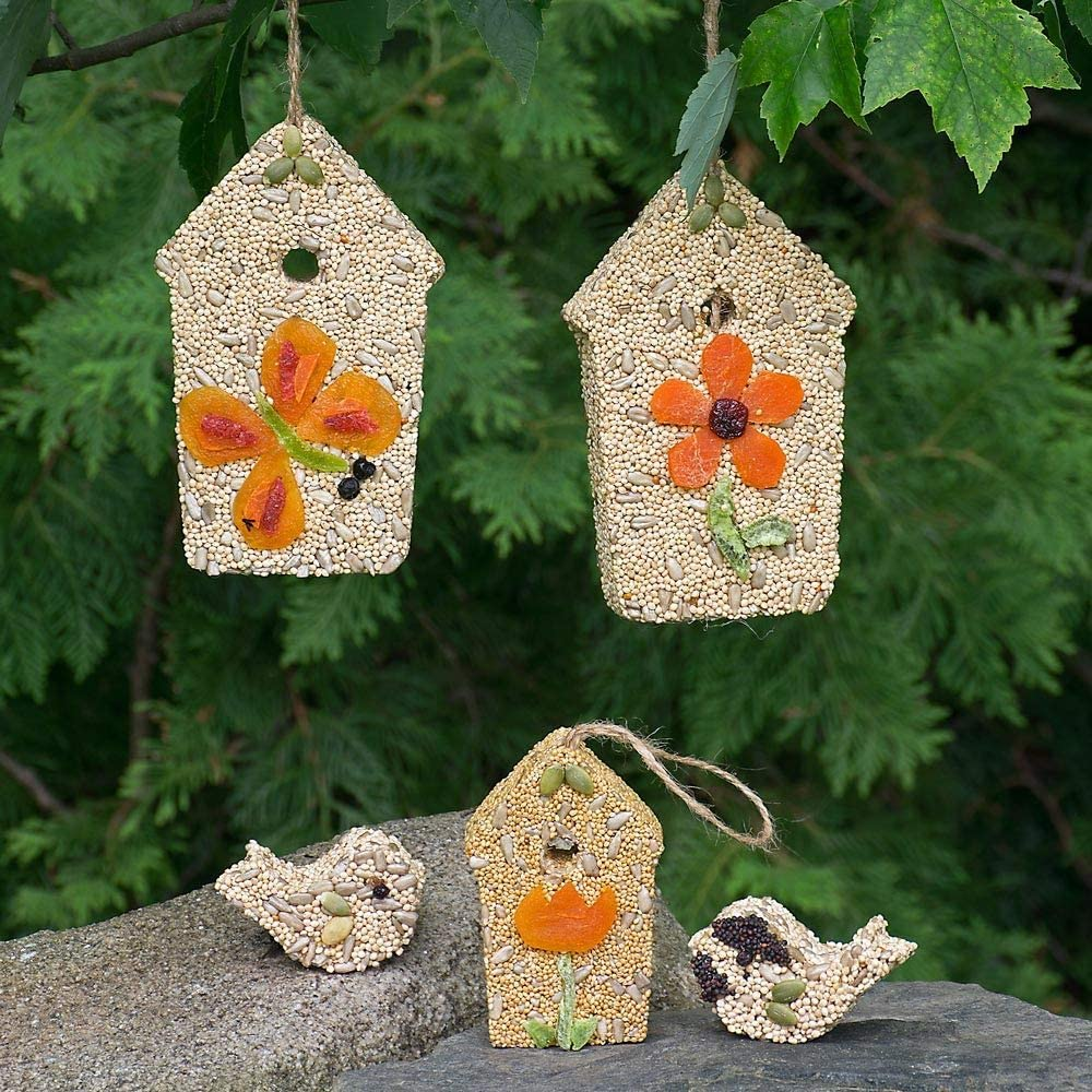 White Flower Farm Birdhouses and Seed Birds - Seed Coated Wooden House Ornaments (FZ36)