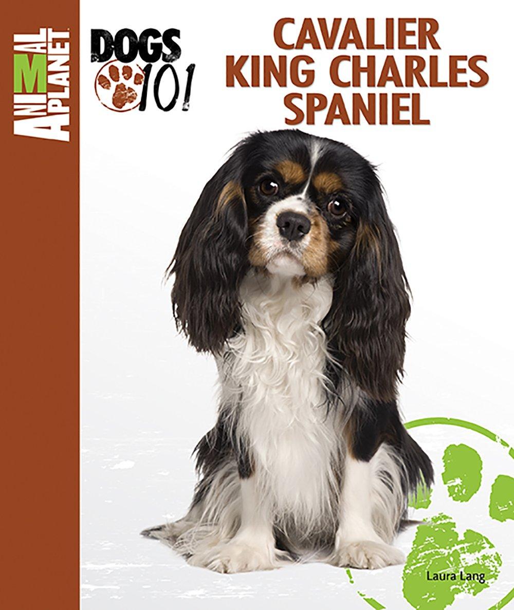 Cavalier king charles spaniel animal planet dogs 101 laura lang cavalier king charles spaniel animal planet dogs 101 laura lang 0018214137153 amazon books nvjuhfo Choice Image