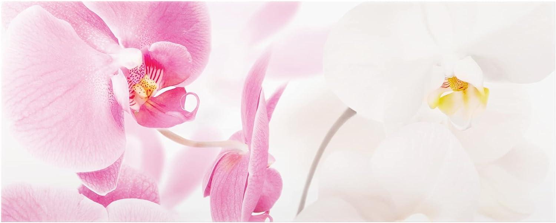 Delicate Orchids Bilderwelten Spritzschutz Glas HxB: 50cm x 125cm Panorama Quer