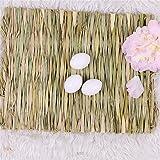 Grass Mat Woven Bed Mat for Small Animal Bunny